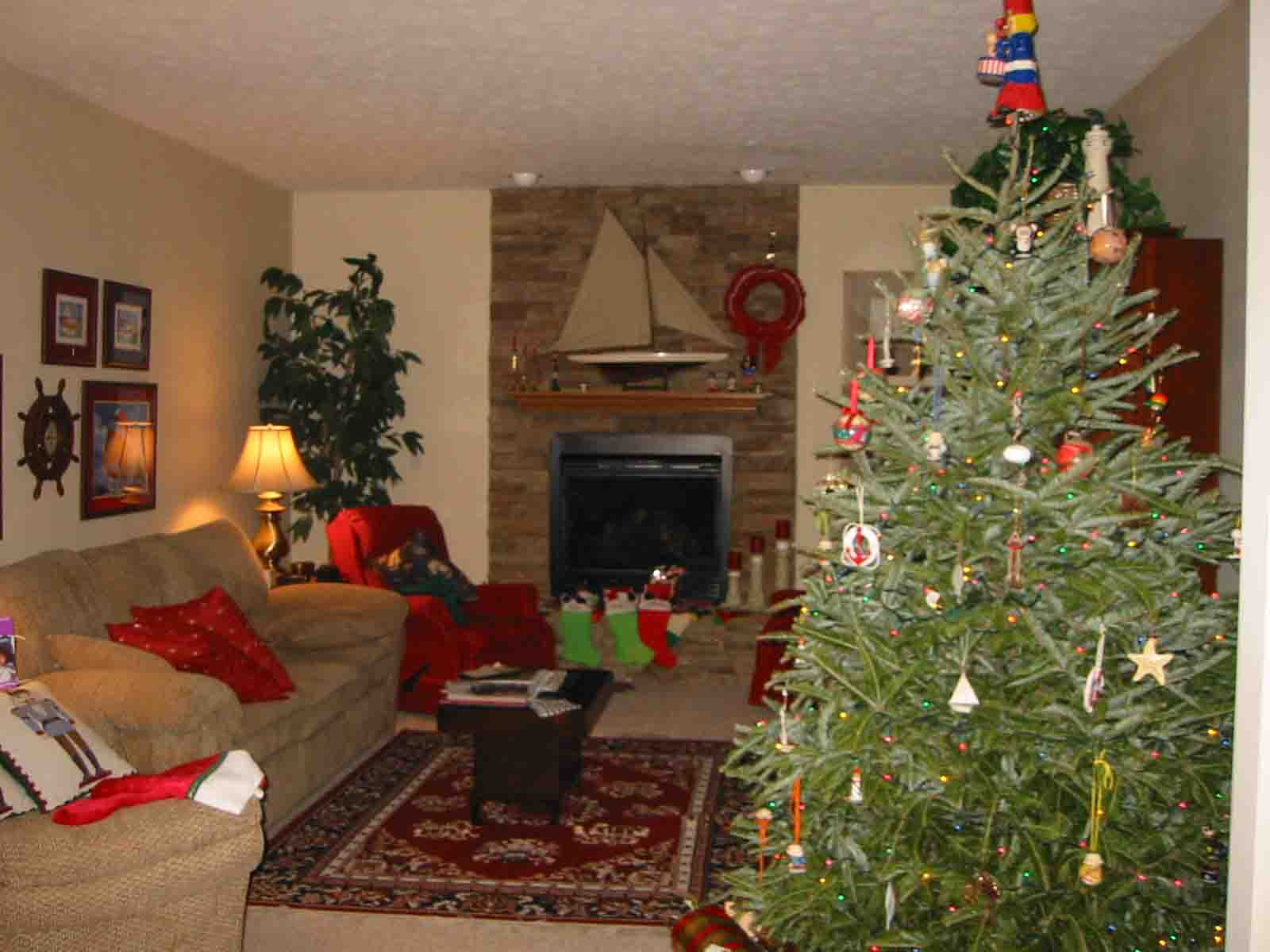 Christmas Tree In Living Room Photos Christmas And
